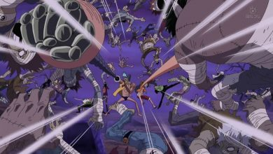 Tìm hiểu về Trái Ác quỷ Gomu Gomu no Mi trong One Piece