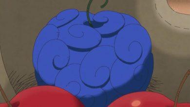 Tìm hiểu về Trái Ác quỷ Sara Sara no Mi trong One Piece