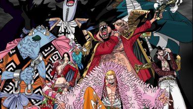 Tìm hiểu về băng hải tặc Shichibukai - Thất Vũ Hải trong One Piece