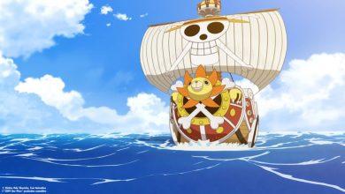 Con tàu Thousand Sunny của băng Hải tặc Mũ Rơm trong One Piece