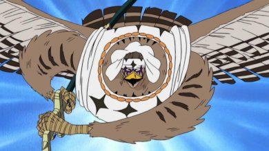 Tìm hiểu về các loại Trái Ác quỷ hệ Zoan mạnh nhất trong One Piece