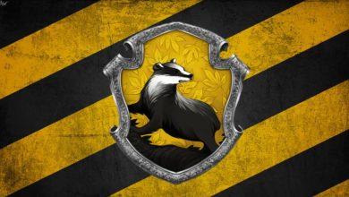Tìm hiểu Nhà Hufflepuff trong Harry Potter là gì?